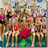 Региональный турнир по художественной гимнастике в Коврове
