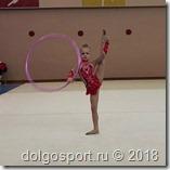 Открытый турнир по художественной гимнастике «Вдохновение».