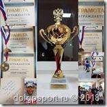 """Фестиваль контактных единоборств """"Юный Разведчик"""" в Щербинке"""